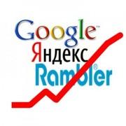 Продвижение,  реклама,  раскрутка сайтов в Тольятти